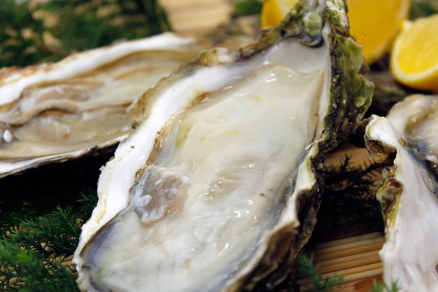 岩手県産 生食用殻つき牡蛎(20個入)