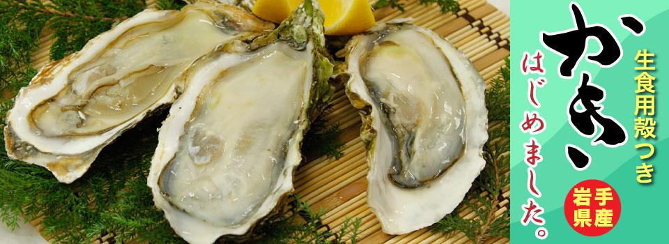 生食用殻つき牡蛎